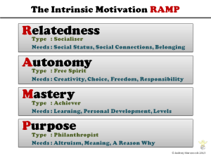Intrinsic-Motivation-RAMP (1)